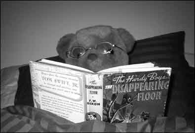 Mr. Bear reading a Hardy Boys book